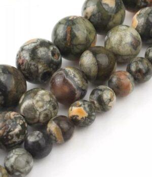 Métarhyolite - Jaspe Orbiculaire - Jaspe des forêts tropicales